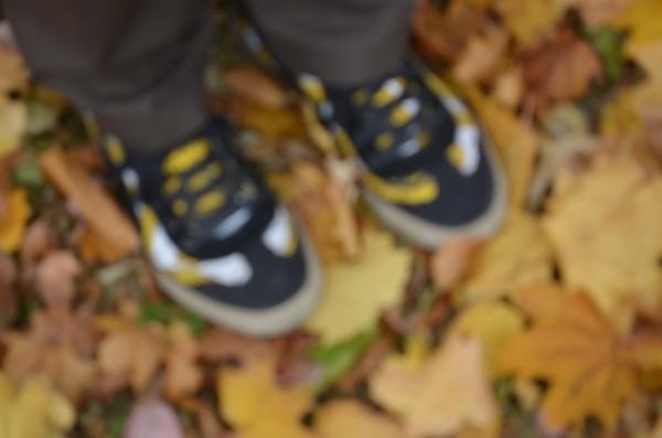 20131110-shoes